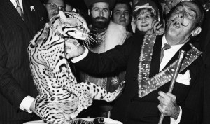 FRANCE - NOVEMBER 08: Salvador Dali And A Ocelot In Paris In 1967 (Photo by Keystone-France/Gamma-Keystone via Getty Images)